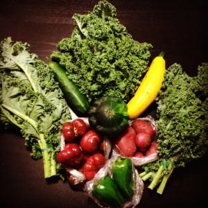 Farmer's Market Produce